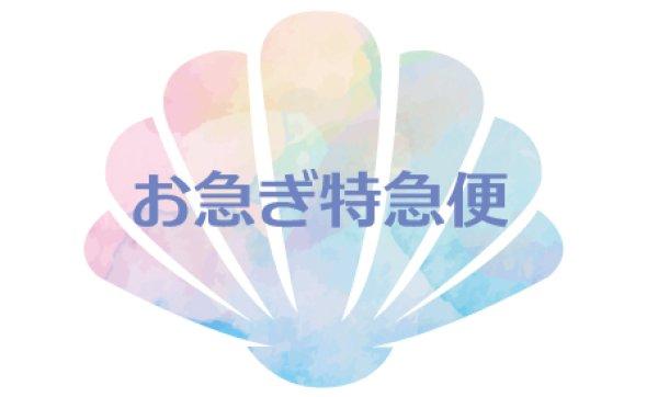 画像1: お急ぎ特急便 (1)